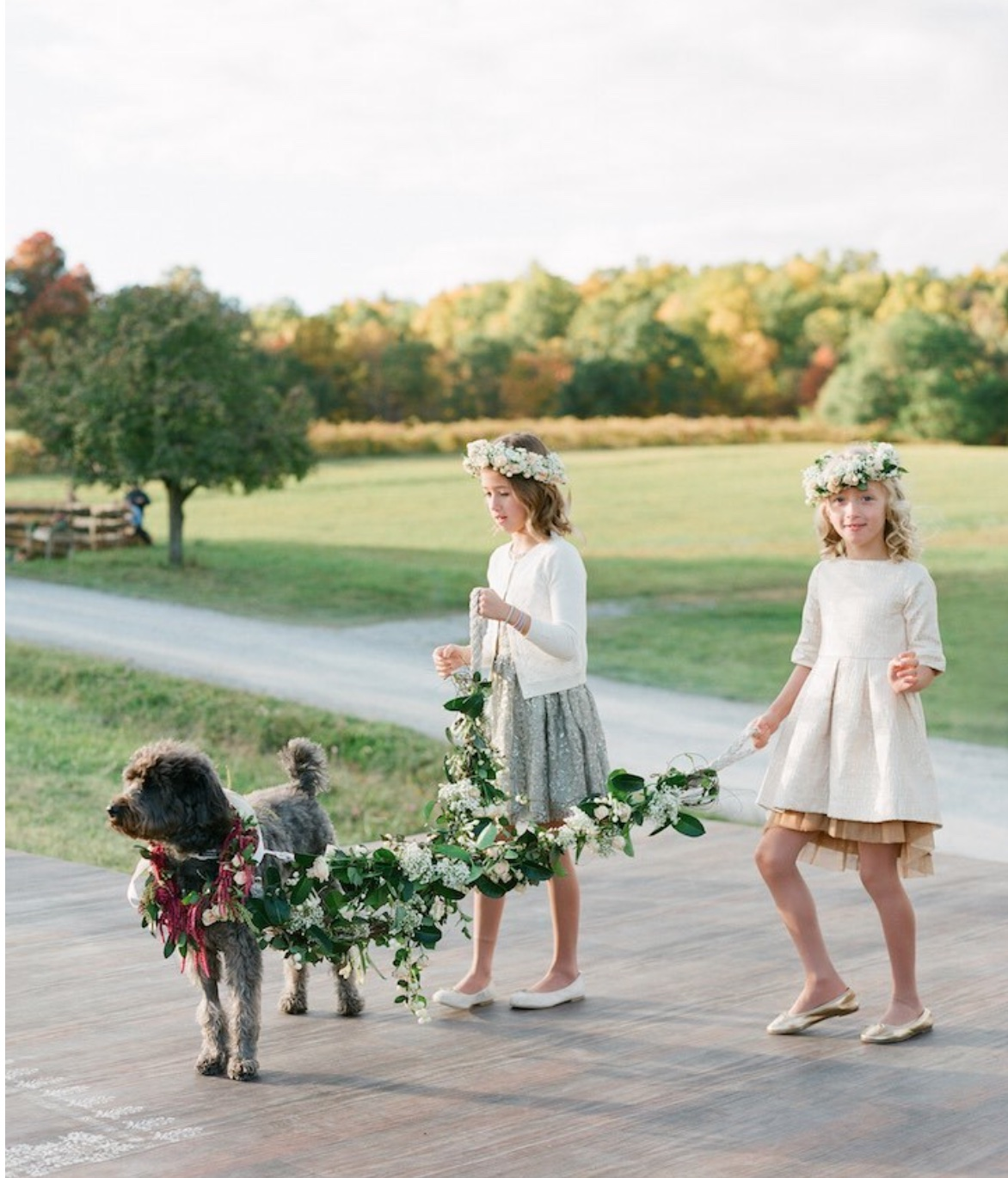 two flower girls with a dog
